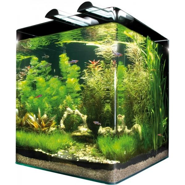 Nanocube kit complet dennerle 60l for Poisson aquarium 60l