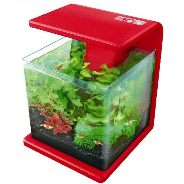 Nano aquarium quip superfish aquawave rouge 15l for Nano aquarium poisson