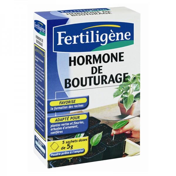 Hormone de bouturage fertilig ne 5x5 grammes - Hormone de bouturage ...