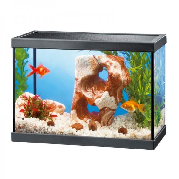 Aquarium quip ciano aqua 15 13 8l for Achat poisson rouge paris 15