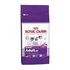 Croquettes Royal Canin pour chien géant - 4kg