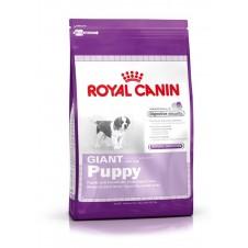 Croquettes Royal Canin pour jeune chiot géant - 15kg
