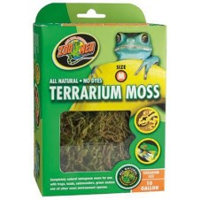 Mousse pour terrarium